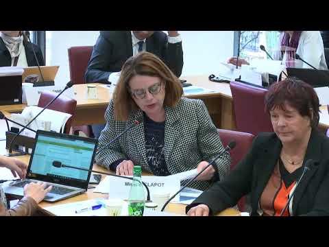 Commission des affaires étrangères, Mme Laurence Boone cheffe économiste de l'OCDE