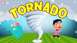 What is a Tornado? The Dr. Binocs Show   Best Learning Videos For Kids   Peekaboo Kidz