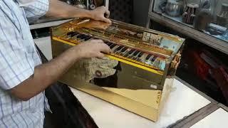 Harmonium BINA Golden 3 reed STD