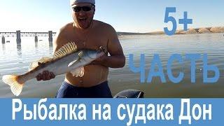 Моторные лодки - купить лодки Казанка, Прогресс и Касатка ...