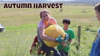 Why I Love Gardening in the North | Autumn Harvest Farm Vlog