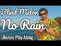 Blind Melon - No Rain (Ukulele Cover / Play Along / Tutorial)