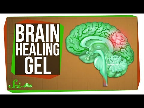 The New Gel That Regrows Brains