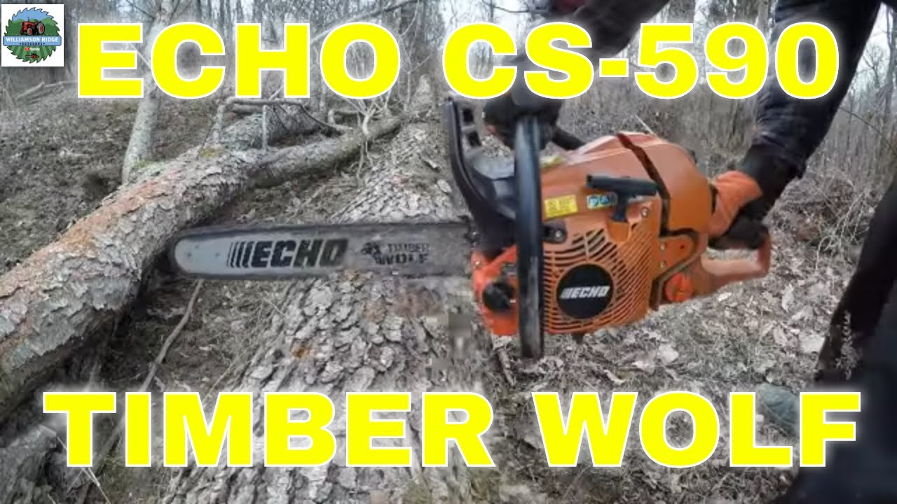 5 Best Echo Chainsaws Reviewed & Updated (Read Before Buying!)