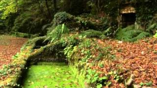 Parco Nazionale del Gargano - La Foresta Umbra