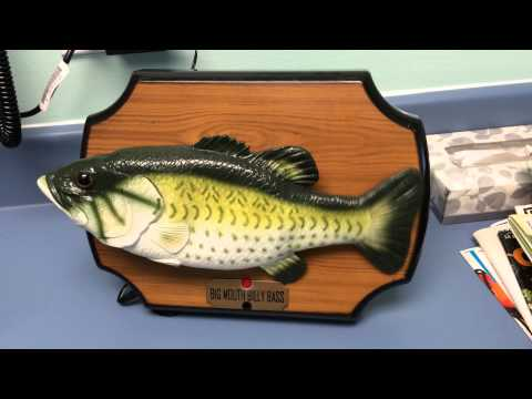 Big mouth billy bass singing fish tf family show youtube for Big mouth billy bass singing fish