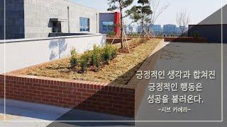 #신월동#조경공사#플랜트박스