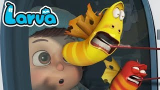 Larva Movie | Larva Cartoon Week 4 Episode 61 ~ 104 | Larva Cartoon terbaru | larva official