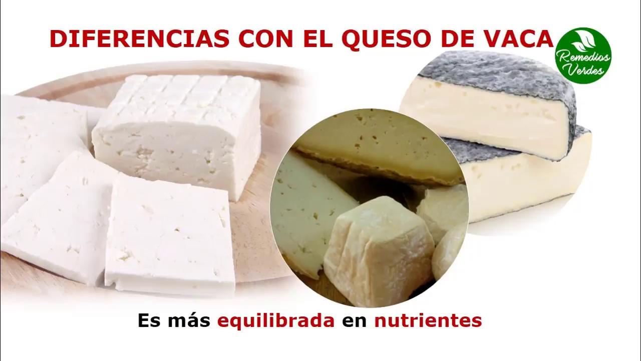 Beneficios del queso de cabra youtube - Beneficios queso de cabra ...