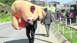 Peluche gigante es obsequiado por joven enamorado en Perú