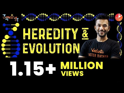 Heredity and Evolution EXPLAINED | CBSE Class 10 Biology | NCERT Solutions | Vedantu Class 10