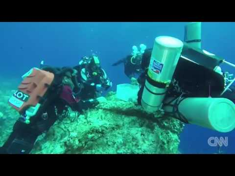 26915 Archéologie Mensch CNN Skeletal remains found at ancient shipwreck site