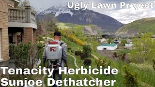 ugly lawn project, tenacity herbicide challenge and sunjoe dethatcher review, billbug prevention