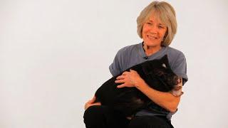 About Pig Expert Susan Magidson | Pet Pigs