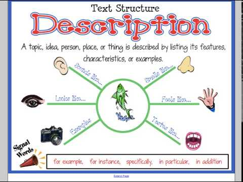 Text Structures Overview
