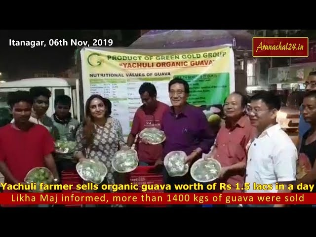 Yachuli farmer sells organic guava worth of Rs 1 5 lacs in a day