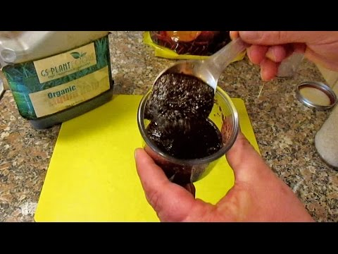 Cheap & Easy All Natural DIY Rooting Hormone for Cloning  Propagating New Plants Via Cuttings!