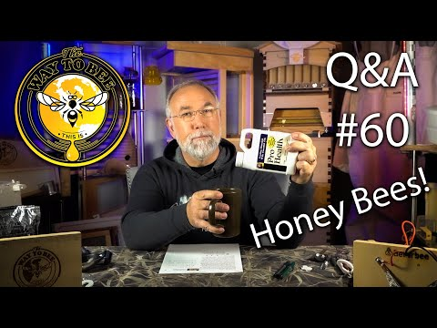 Backyard Beekeeping Questions And Answers 60 Are You Ready For Packages?
