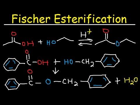 Fischer Esterification Reaction Mechanism - Carboxylic Acid Derivatives