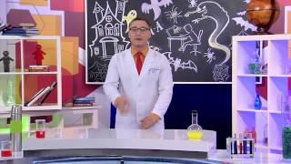 """Детское познавательное ток шоу """"Лаборатория профессора Звездунова"""""""