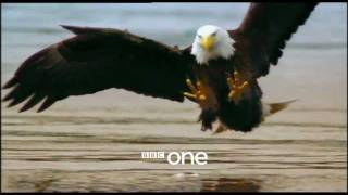 Earthflight Trailer - BBC One