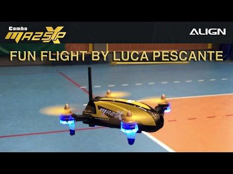 Fun Flight Align MR25X - Luca Pescante