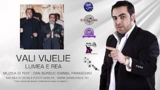 VALI VIJELIE - LUMEA E REA (AMIRAL MUSIC)