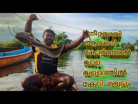 ആരകൻ കോർത്തു ചൂണ്ട കെട്ടി,  പറന്നടിച്ച് ആറ്റുവാള | kerala river fishing| heavy catch of vallago