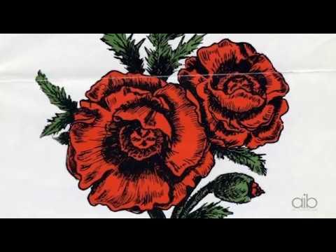 AIB Presents - Poppy Lady
