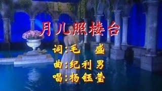 杨钰莹 - 月儿照楼台(Karaoke Version)