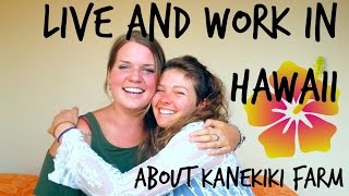 Kanekiki Farm || Jumpstart Your Life In Hawaii!