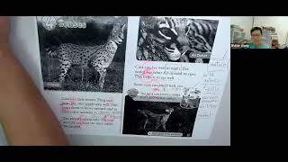 Publication Date: 2021-06-09 | Video Title: Senses