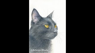 How to Paint a Realistic Black Cat in Watercolor