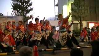 福井大学よっしゃこい2013年度演舞「夢光咲」 むこうへ 安濃津よさこい...