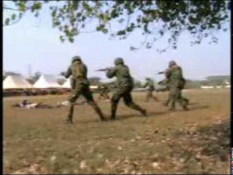 วันกองทัพไทย 2553-3