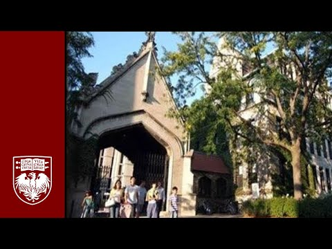 A Student-Led Introduction To The University Of Chicago College