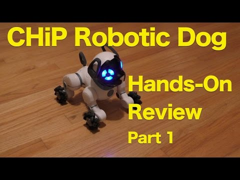 CHiP Robot Dog Review, Should Real Dogs Be Worried?