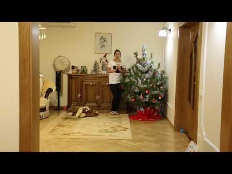 Пастила в домашних условиях