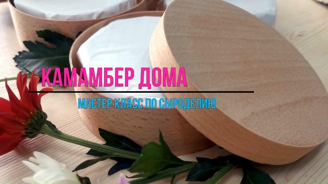 Камамбер / Как сделать Сыр с белой плесенью в домашних условиях / Мастер класс по сыроделию