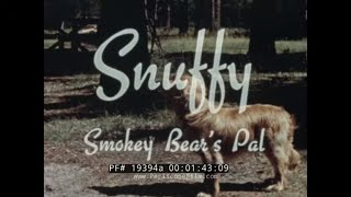 1950s SMOKEY THE BEAR P.S.A.s & MAINE FOREST FIRE DOCUMENTARY FILM 95644a