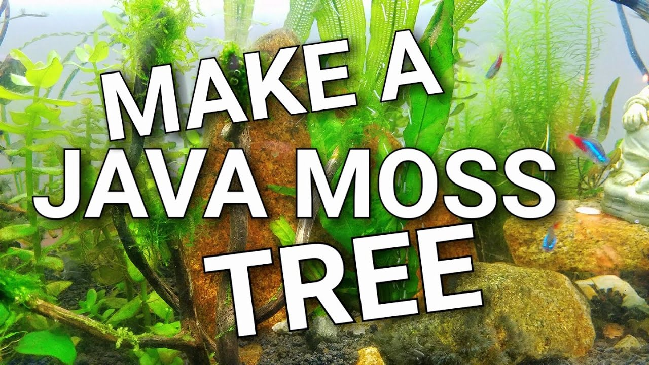 how to make generic trees in java