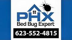 Paradise Valley AZ Bed Bug Extermination - 623-552-4815 | Bed Bug Treatment