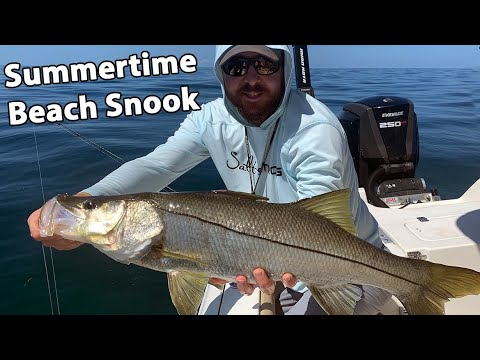 5 Tips For Catching Snook From The Beach (When Fishing From A Boat)