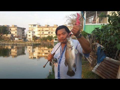 ไปป่วนน้าป๋อม บุปผาฟิชชิ่ง By Roj fishing