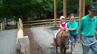 Laila's First Pony Ride (Turtle Back Zoo)