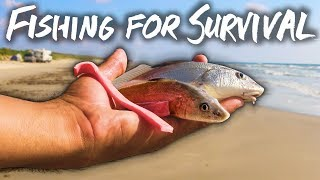 living off of fish at the beach - surf fishing