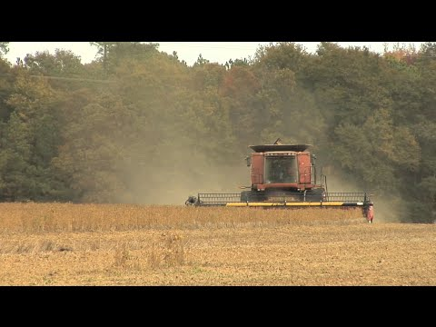 Georgia Grains Producers Meet For Industry News, Crop Outlook