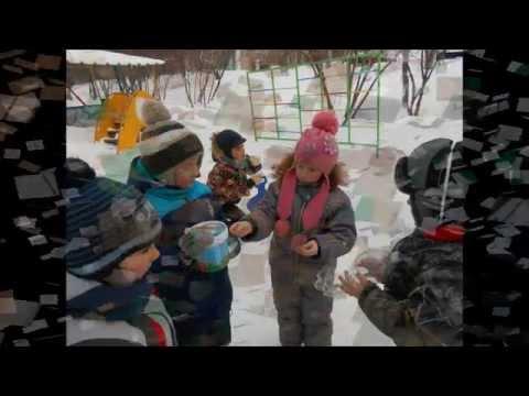 Кормушки для зимующих птиц (детская киностудия МАДОУ