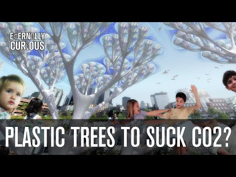 Fake Plastic Trees | Eternally Curious #4