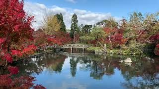 永観堂 放生池から弁天社を眺める紅葉  2018年11月15日 秋【京都の紅葉】